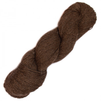 Eco puna - andean brown